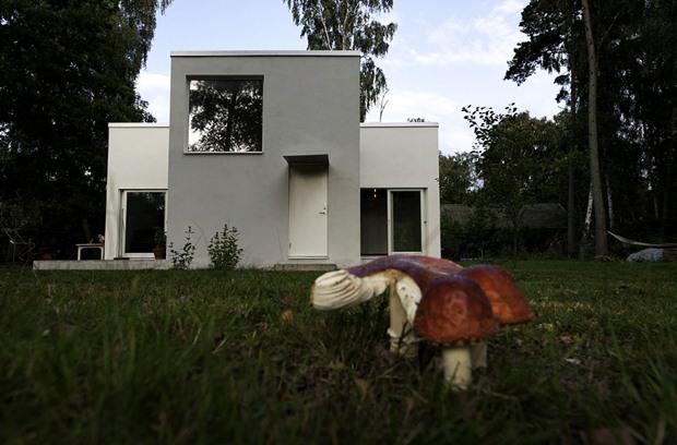 สนามหญ้า แบบหลังบ้าน ขนาดเล็ก