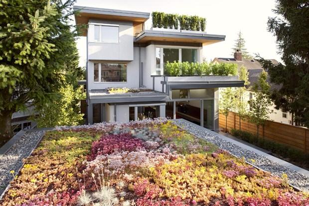 การจัดสวนบนทาวน์เฮ้าส์ Town house garden design
