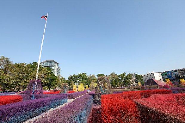 การจัดสวนที่มีสีสันสดใส