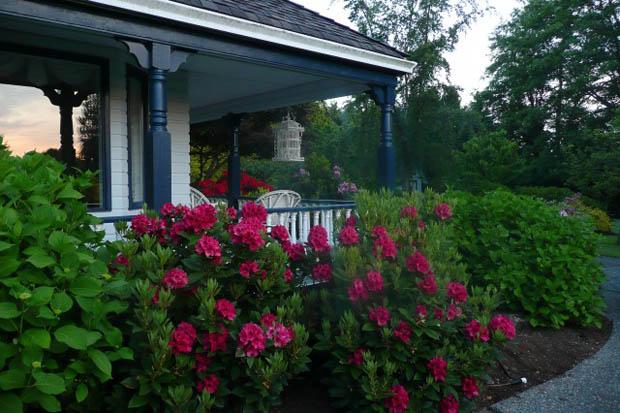 จัดสวนดอกไม้ข้างบ้าน