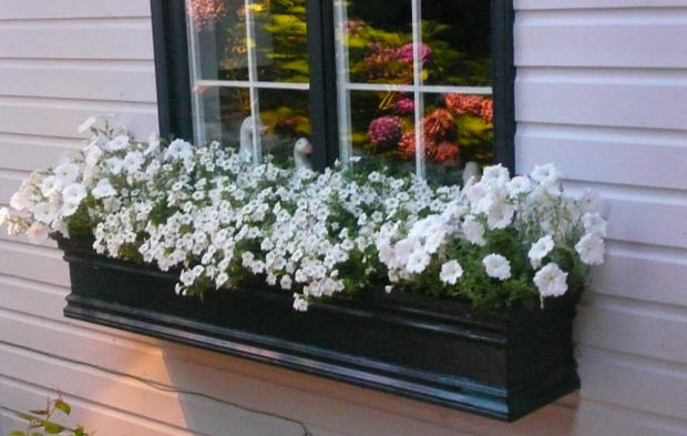 แบบสวนดอกไม้ขนาดเล็ก ริมหน้าต่าง
