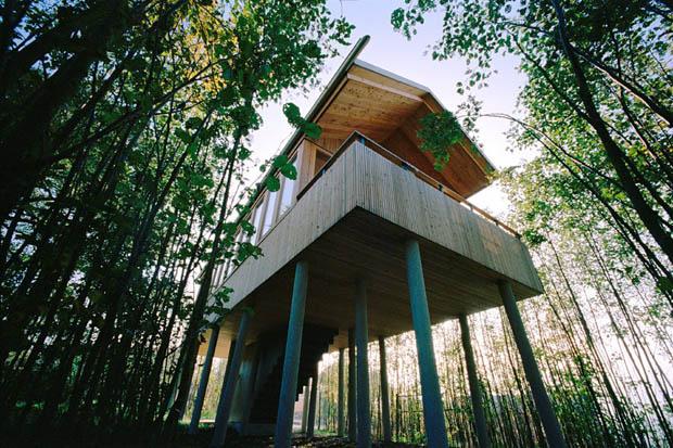 แบบบ้านไม้ ป้องกันน้ำท่วม เสาสูง มีใต้ถุน