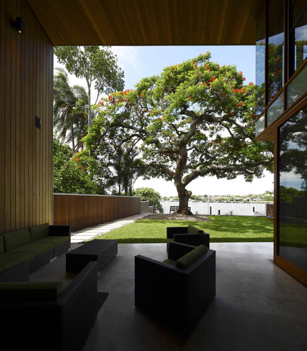 ภาพบ้าน มีต้นไม้ใหญ่ หน้าบ้าน