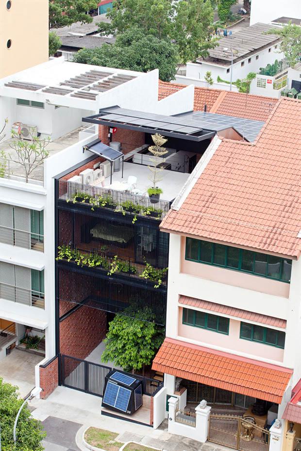 แบบบ้านตึกแถว ปลูกต้นไม้บนดาดฟ้า
