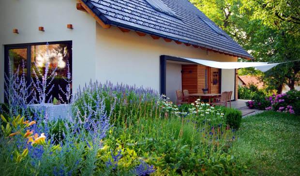 ทุ่งดอกไม้ ดอกหญ้า จัดสวนบริเวณบ้าน