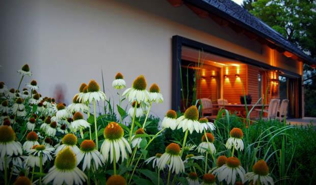 แบบบ้านชั้นเดียว สไตล์วินเทจ จัดสวนทุ่งดอกไม้