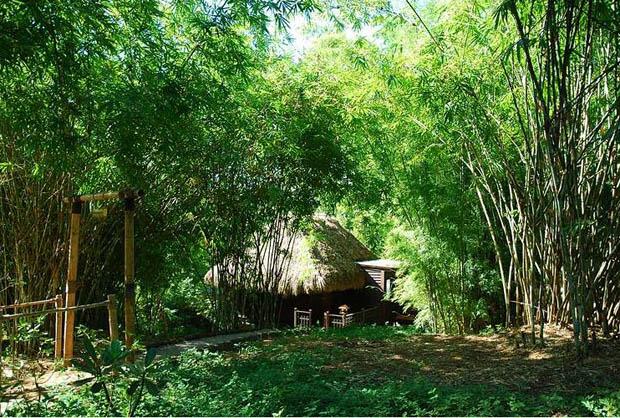 แบบบ้านบังกะโล รีสอร์ท เรือนไทย