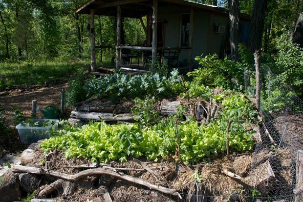 แปลงผักสวยๆ ตกแต่งสวนผัก
