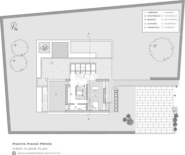 Home Plan Modern