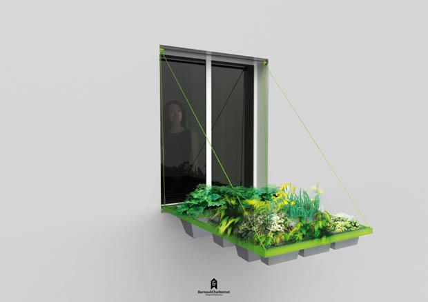 จัดสวนบนคอนโด สวนริมหน้าต่าง