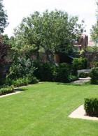 จัดสวนบริเวณบ้าน พื้นสนามหญ้า