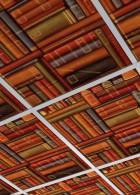 แผ่นยิปซั่ม ฝ้าเพดาน ลายสวยๆ