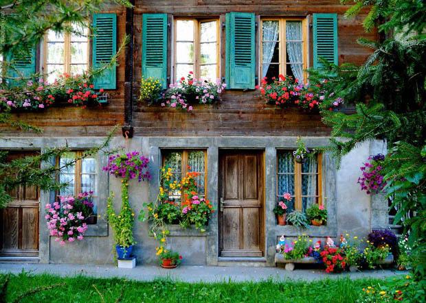 จัดสวนริมหน้าต่าง สวนดอกไม้สีสันสดใส