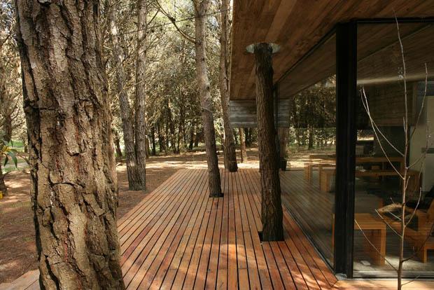 เจาะพื้นไม้ พื้นระเบียงบ้าน ปลูกต้นไม้