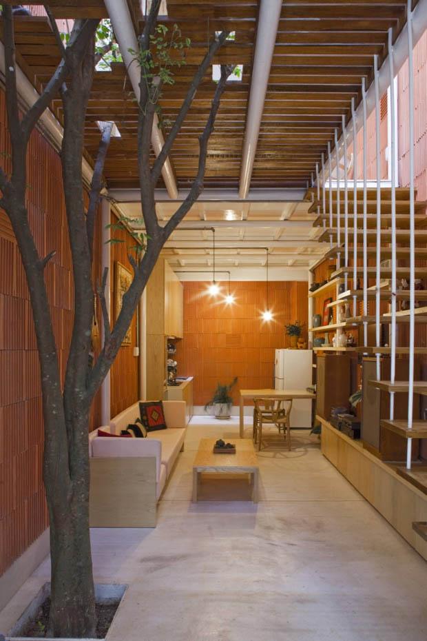 การปลูกต้นไม้ ภายในบ้าน ทาวน์โฮม