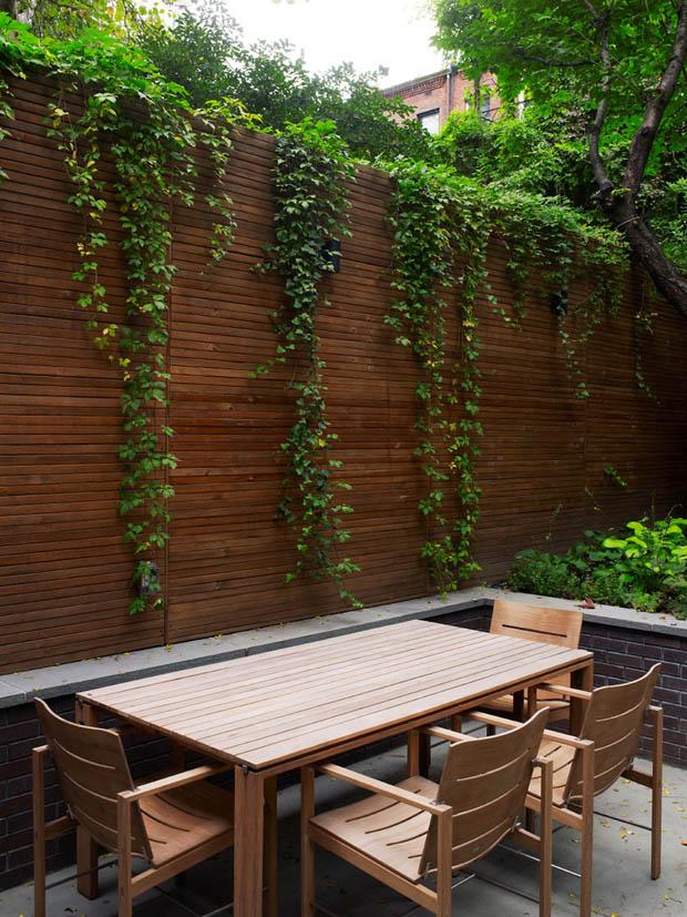 จัดสวนกำแพง ปลูกไม้เลื้อยไต่กำแพง