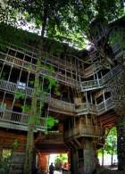 แบบบ้านต้นไม้ สร้างบ้านบนต้นไม้
