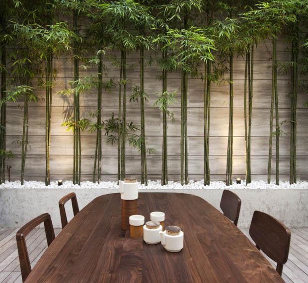 ปลูกต้นไผ่ ภายในบ้าน เสริมฮวงจุ้ย