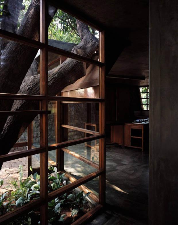 ผนังบ้านเป็นกระจก รับแสงภายนอก
