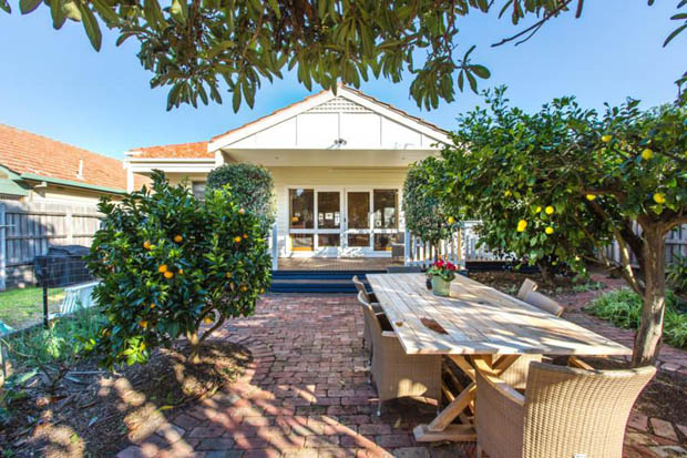 ปลูกต้นส้ม จัดสวนกินได้ สวนหลังบ้าน