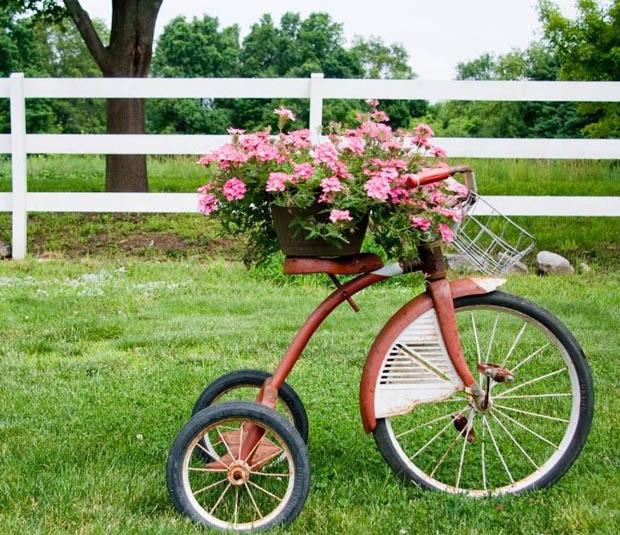 สวนดอกไม้น่ารักๆ