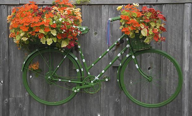 จักรยานจัดสวน