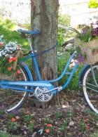 จัดสวนเล็กๆในจักรยาน