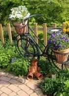 ปลูกดอกไม้ในกระถาง