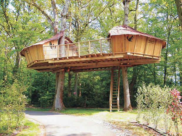 การสร้างบ้านไม้ บนต้นไม้