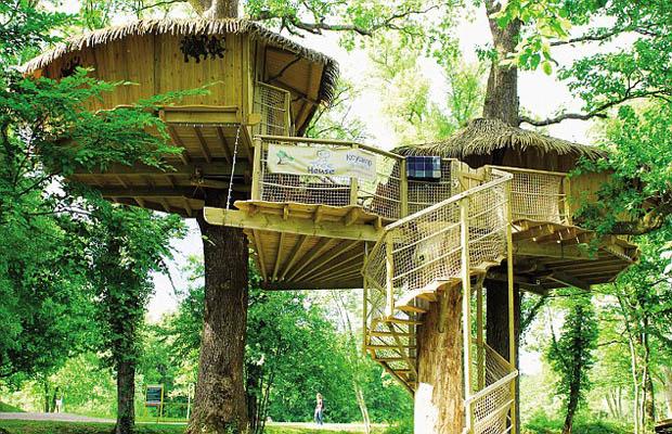 บ้านแคมป์ สร้างบ้านบนต้นไม้