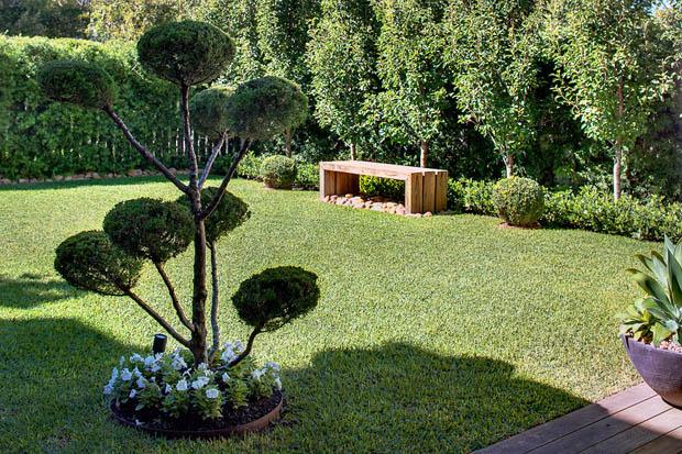 ไม้ดัด ไม้พุ่ม ต้นไม้จัดสวนสวยๆ