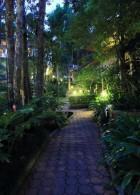 ตัวหนอน ปูพื้นทางเดินในสวน