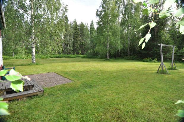 สนามหญ้าสีเขียว