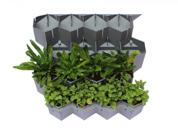 Modular Green Hive สวนแนวตั้ง