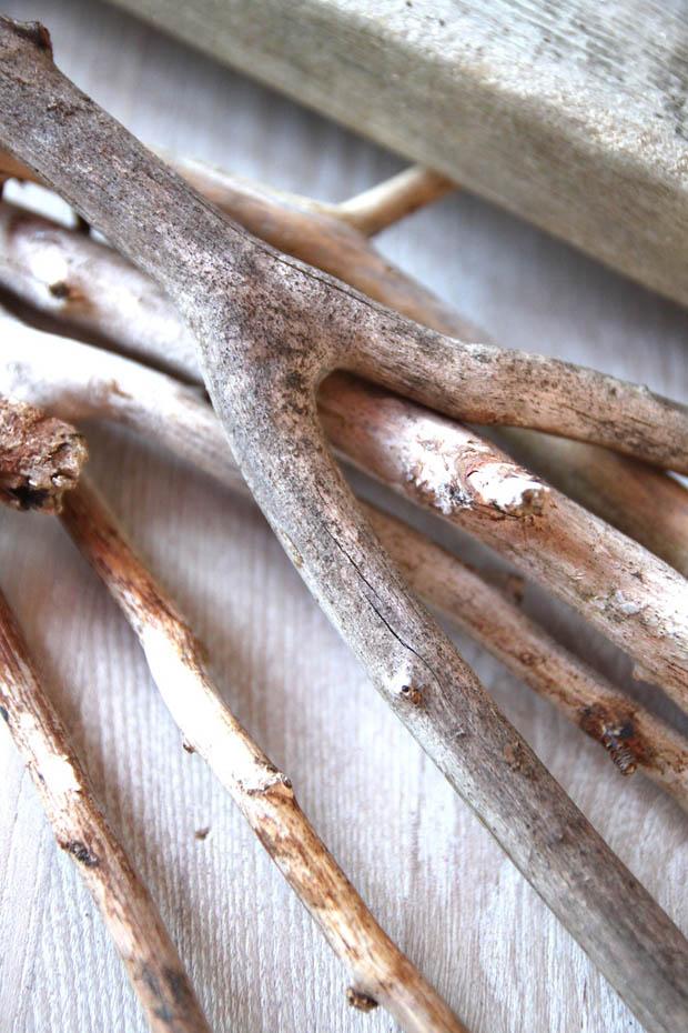 กิ่งไม้