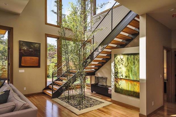 วิธีปลูกต้นไม้ในบ้าน
