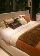 เตียงนอนหรู ที่นอนเครื่องหนัง