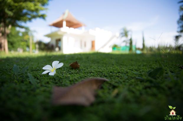 รีสอร์ทในฝัน สวนผึ้ง ราชบุรี