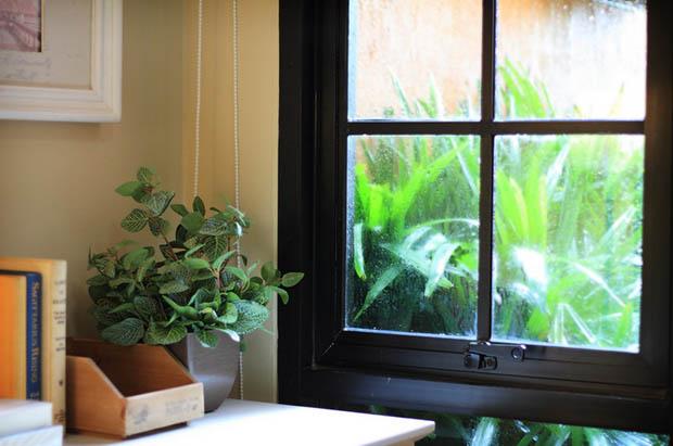หน้าต่าง มีสวนต้นไม้ด้านนอก