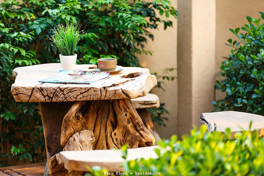 เก้าอี้รากไม้เก่า นั่งเล่นในสวน