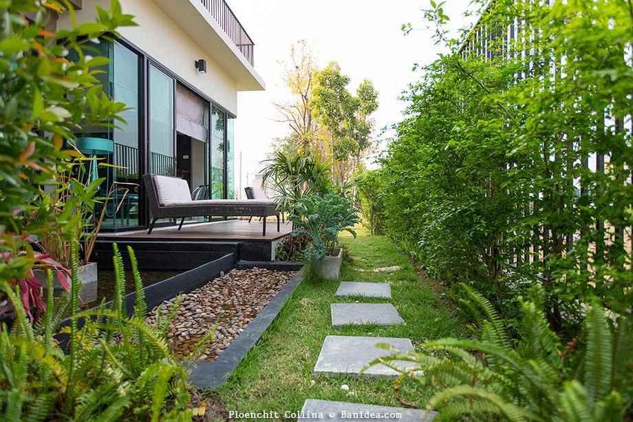 สวนบ่อน้ำขนาดเล็ก สวนระเบียงหลังบ้าน