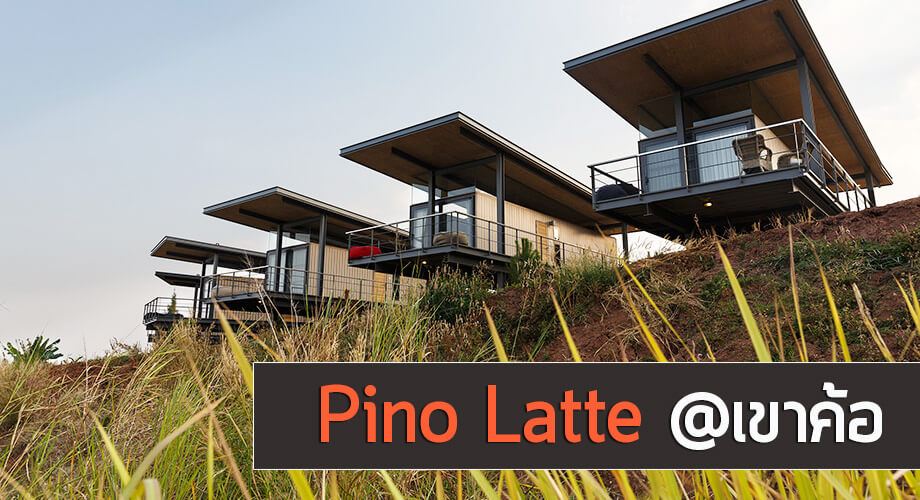 Pino Latte Resort Cafe รีวิว