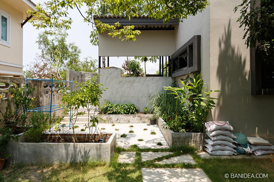สวนผัก ข้างบ้าน