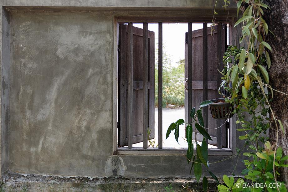 หน้าต่าง มองนอกรั้ว