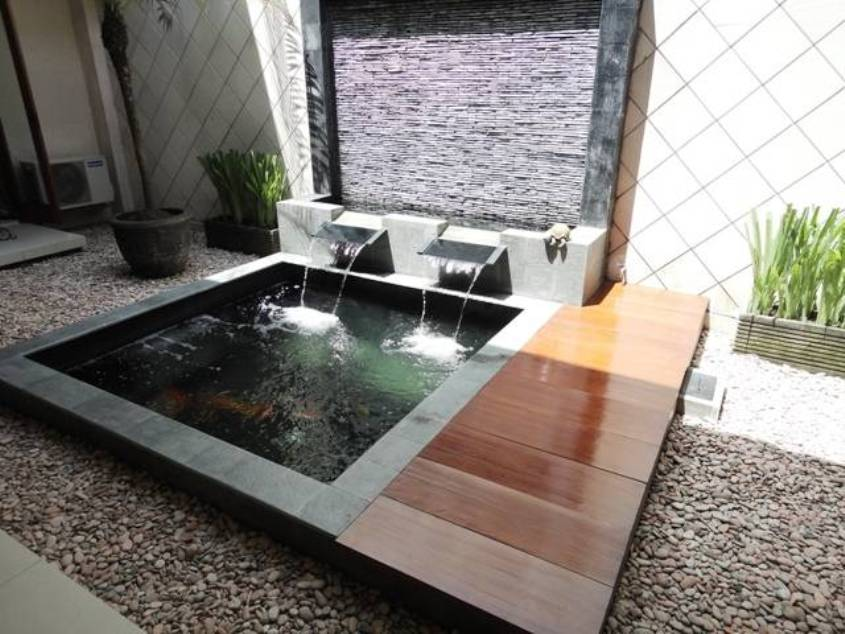 for Modern fish pond design