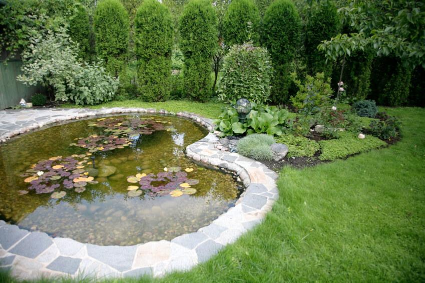บ่อน้ำเล็ก ๆ ในสวน
