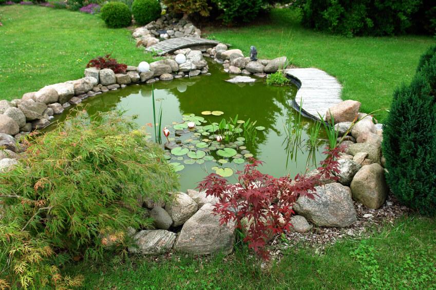 สวนน้ำหลังบ้าน