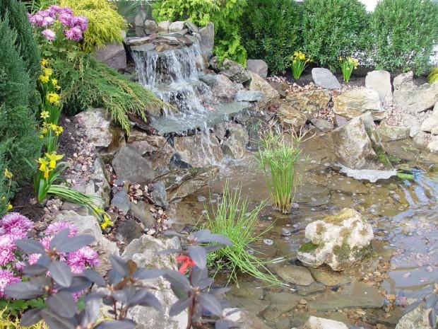 ไอเดียทำสวนน้ำตก