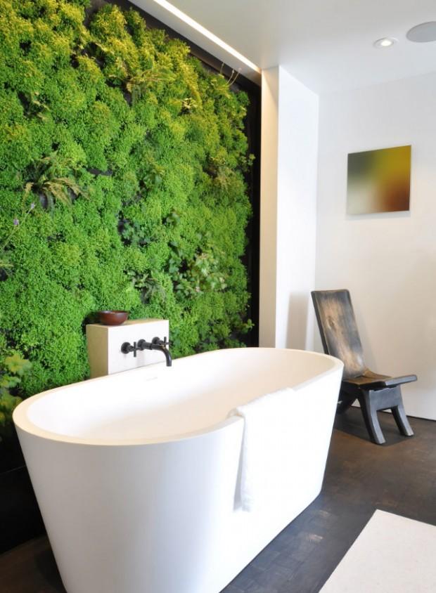สวนแนวตั้งติดผนังในห้องน้ำ