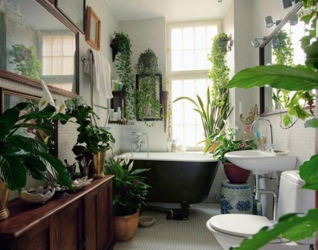 เพิ่มพื้นที่สีเขียวในห้องน้ำ
